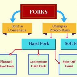 Soft Fork Hard Fork